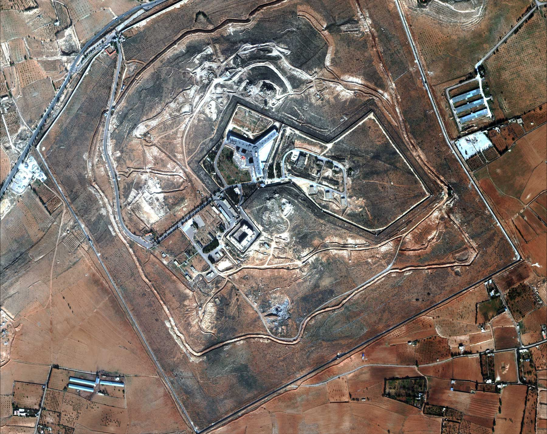 Assad's government is doubling down on the killing of political prisoners as